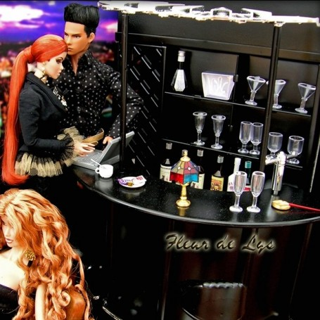 BAR FOR YOUR BARBIE FASHION ROYALTY SILKSTONE MONSTER HIGH BJD MOMOKO BLYTHE PULLIP DOLL