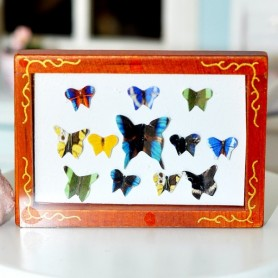 BUTTERFLY BOX FRAME MINIATURE BARBIE FASHION ROYALTY BJD LATI YELLOW BLYTHE PULLIP DOLLHOUSE DIORAMA
