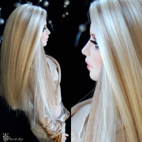 DOLL WIG MONIQUE PARIS BLOND BROWN FOR BARBIE FASHION ROYALTY RILEY DOLLS ...