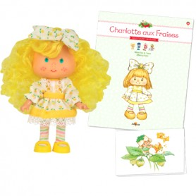 BERRYKIN + BOOK + CARD STRAWBERRY SHORTCAKE SCENTED DOLL CHARLOTTE AUX FRAISES DESIGN 1980