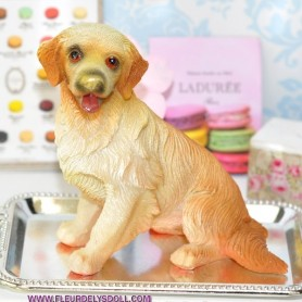 LABRADOR CHIEN MINIATURE LATI YELLOW PUKIFEE BJD BARBIE FASHION ROYALTY SILKSTONE BLYTHE PULLIP DIORAMA