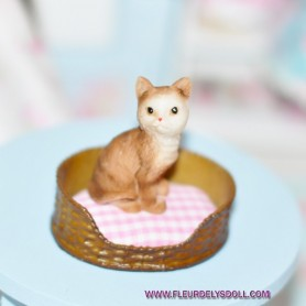 ADORABLE CHAT MINIATURE BARBIE FASHION ROYALTY LATI YELLOW PUKIFEE BJD BLYTHE PULLIP DOLLHOUSE DIORAMA
