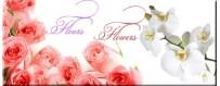 fleurs et plantes miniature